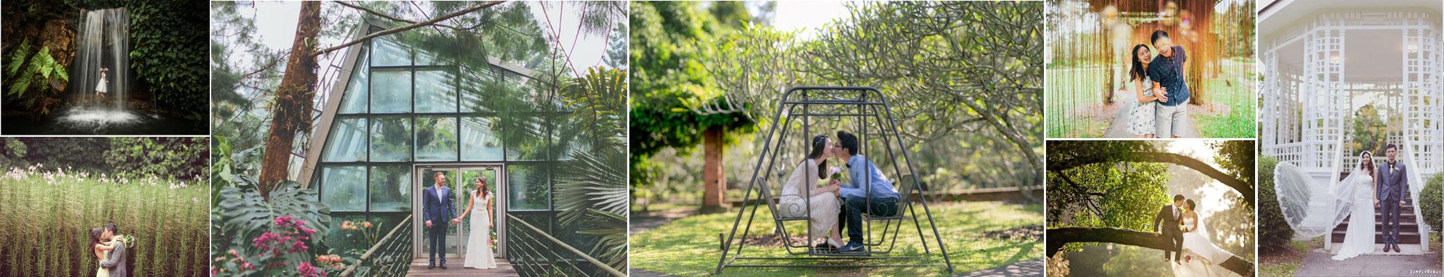 singapore-botanic-garden-wedding